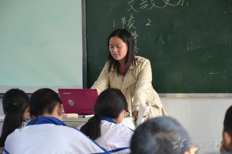 我只是个老师——杨柳