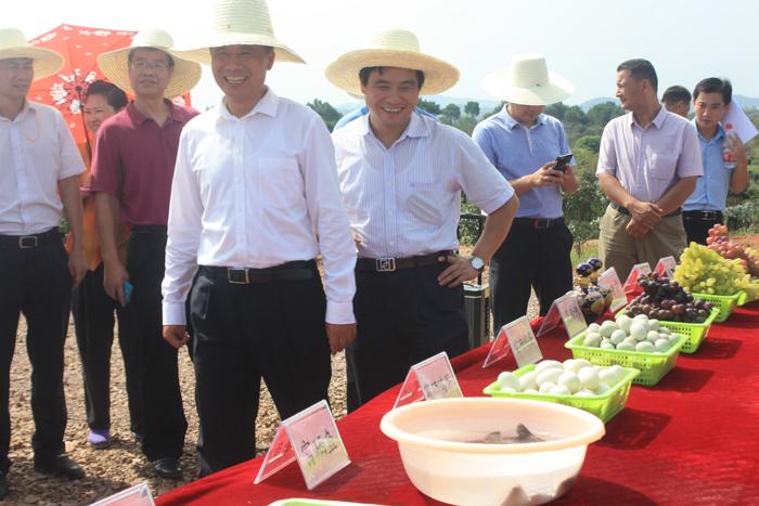 西山教育实践基地建设获进贤县领导好评
