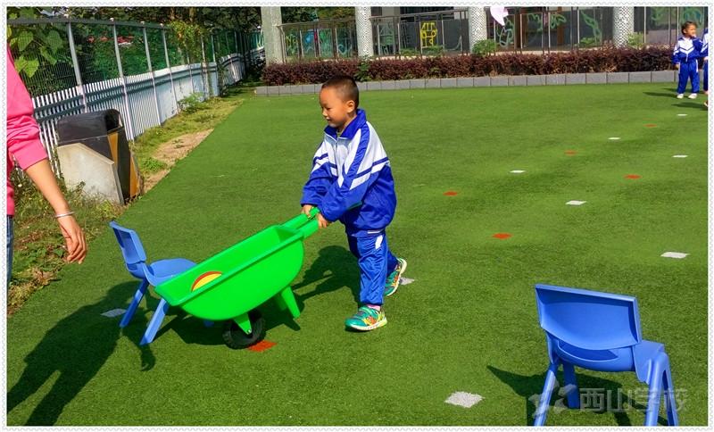 小猴运桃——江西省西山学校幼儿园大二班
