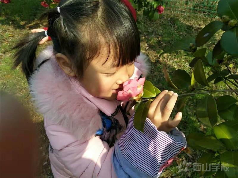 春季幼儿卫生保健常识--江西省西山学校幼儿园