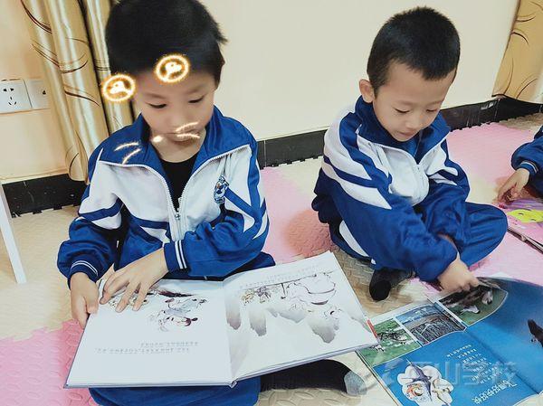 浅谈幼儿早期阅读