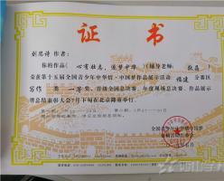 【中华情·中国梦】刘思诗一等奖文章——心有壮志,逐梦中华