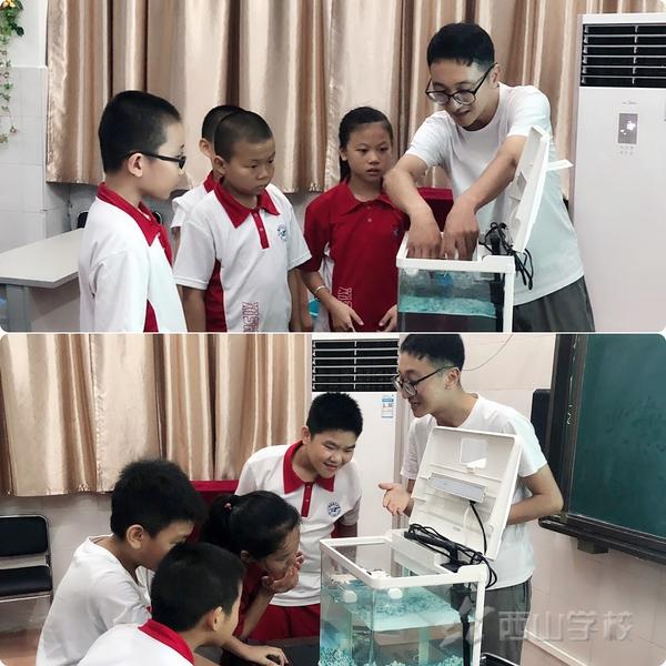 探索创新,共享精彩—福建西山学校小学部开展STEM教学研讨会
